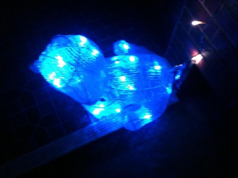 イルミ熊.jpg