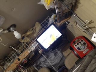 テレビ&LED.JPG